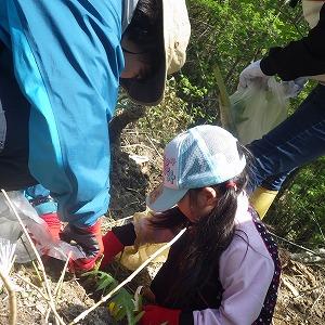 山菜採りをする親子グループ