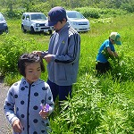 STEP 陸で昆虫や植物観察