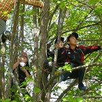 木登りは楽しいぞ
